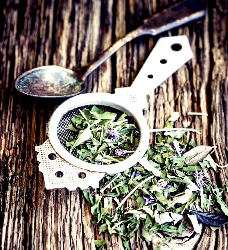 """עלי תה ירוק. """"חוות דרך התבלינים"""". צילום אלוניס"""