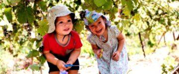 חול המועד סוכות: 3 ימים – 30 בילויים